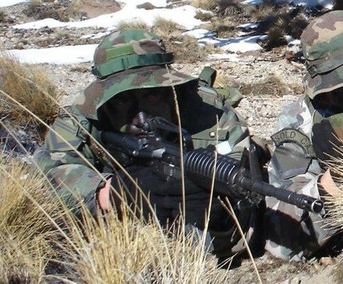 Cascos Azules brindaron seguridad al presidente haitiano M4-ejercito-argentino-438566