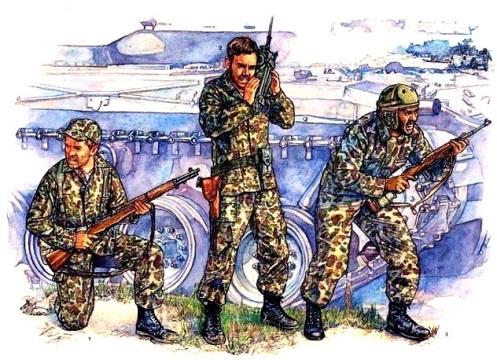 Brigada de asalto 2506