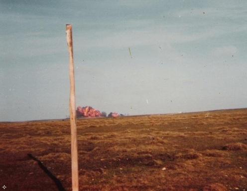 Taylor 1982.