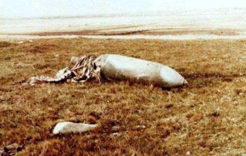 Bombas en la guerra de malvinas 221828_206260139397056_1831100_n