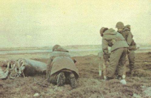 Bombas en la guerra de malvinas 24214_109029622446903_5842430_n