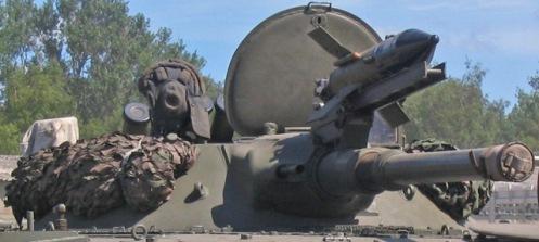 BMP-1_AP_2