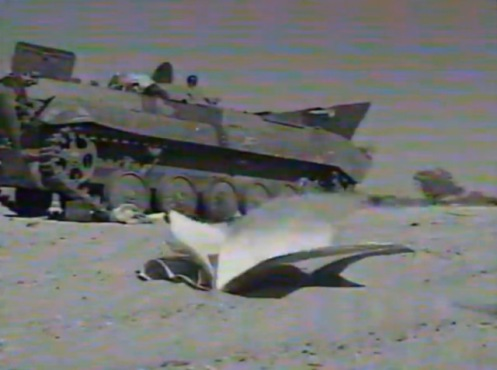 BMP DAÑADO LIBIO