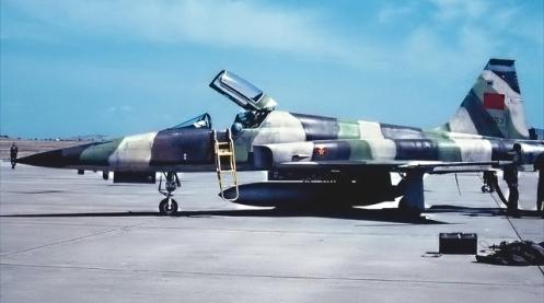f5 marroqui (2)