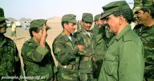 Frente Polisario del Sahara Occidental (10)