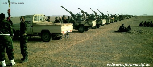 Frente Polisario del Sahara Occidental (1)