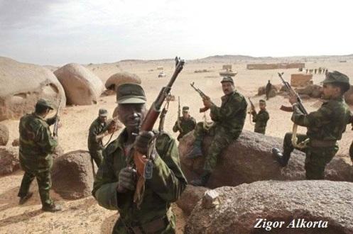 Frente Polisario del Sahara Occidental (39)
