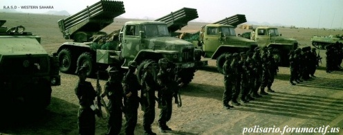 Frente Polisario del Sahara Occidental (47)