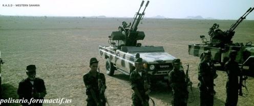 Frente Polisario del Sahara Occidental (7)