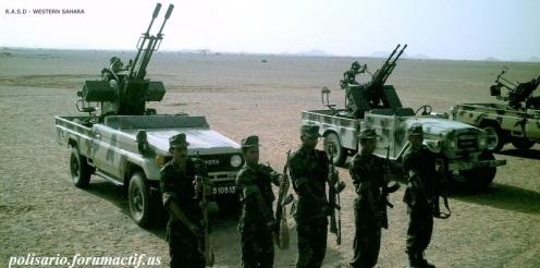 Frente Polisario del Sahara Occidental (9)