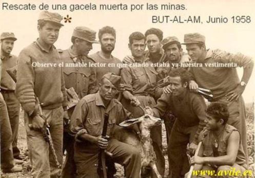 soldados pavia 19 guerra de infi -