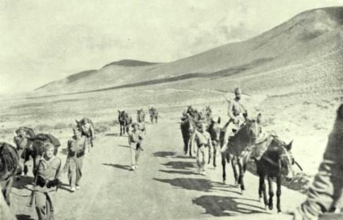 soldados sobre mulos en ifni