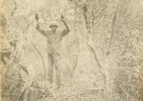 prisionero paraguayo-guerra del chaco 32.35