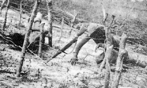 soldado paraguayo muerto-villamontes