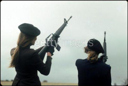 IRA (15)