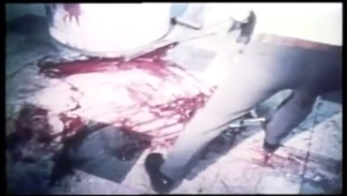 sangre-ataque contra el aeropuerto Lod por el JRA