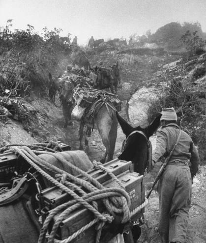 guerra sino-india 1962 (13)