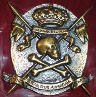 Regimiento de Caballería Ligero Acorazado Lusitania n.º 8