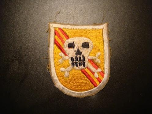 guerra de vietnam skull (3)