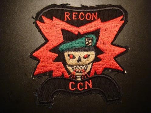 guerra de vietnam skull (4)