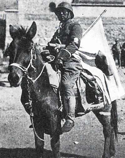 Manchurian Stormtrooper