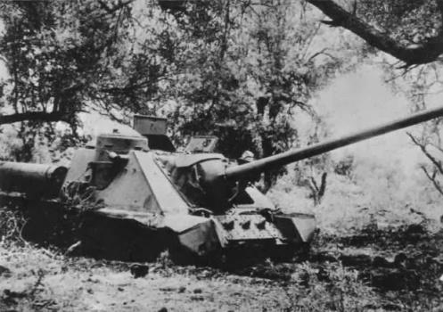SU-100-syria-1967-n54-2 (1)
