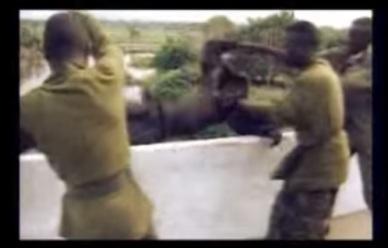 Segunda-guerra del congo (1)