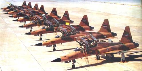 cazas F-5 IRIAF D