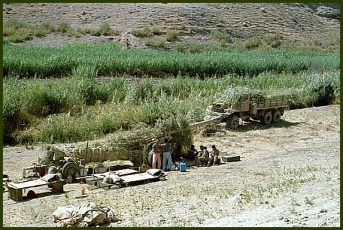 guerra de Irán-Irak 80-88 s (108)