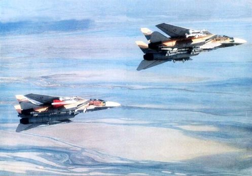 Irani_F-14_Tomcats_carrying_AIM-54_Phoenixs