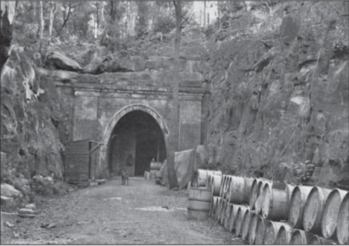 tuneles-gas venenoso-australia